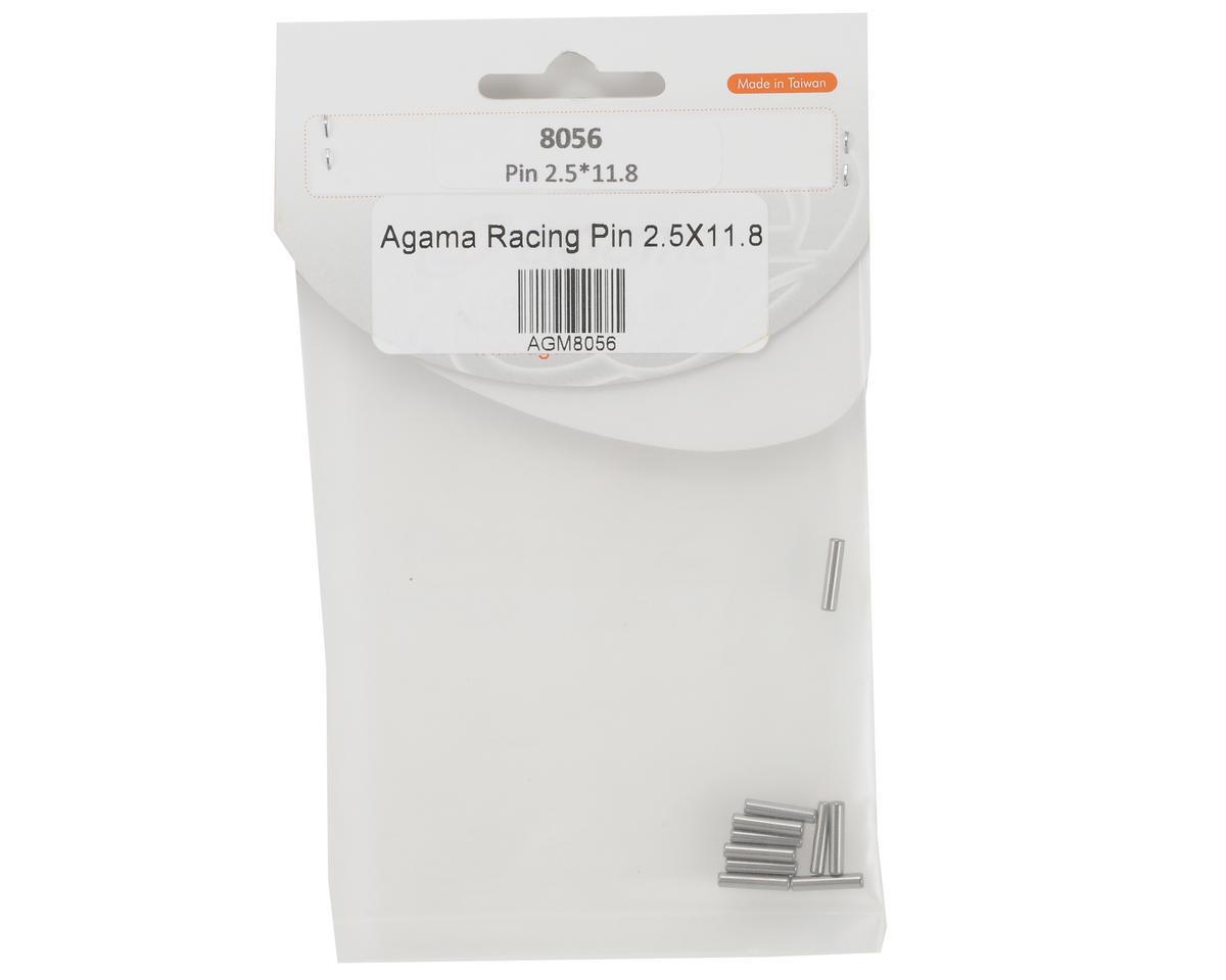 Agama Racing 2.5x11.8mm Pin Set (10)