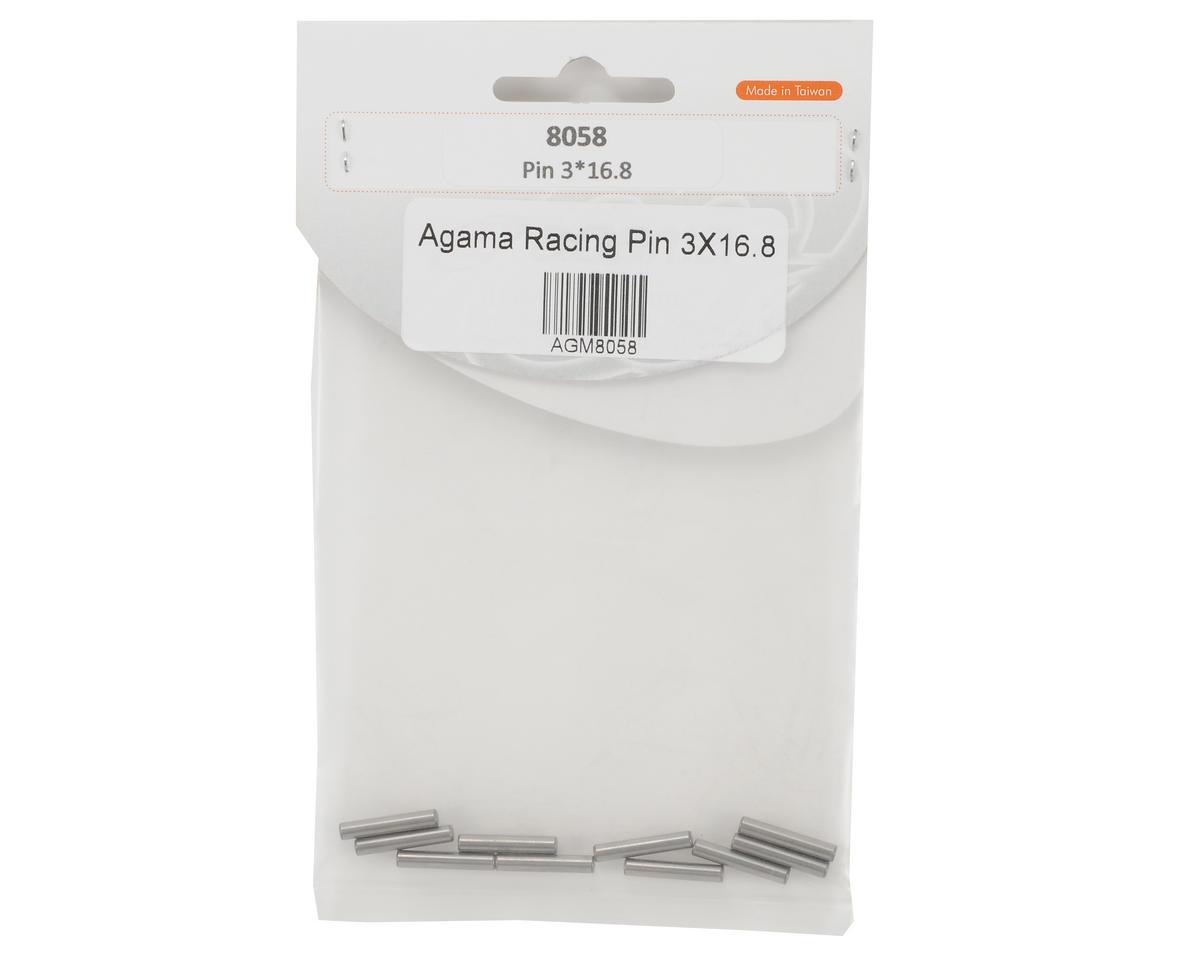Agama Racing 3x16.8mm Pin Set (10)