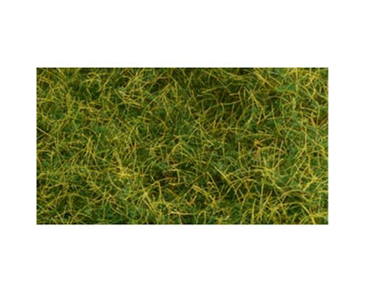 "Bachmann 6mm 11"" x 5.5"" Static Grass, Wild Grass"