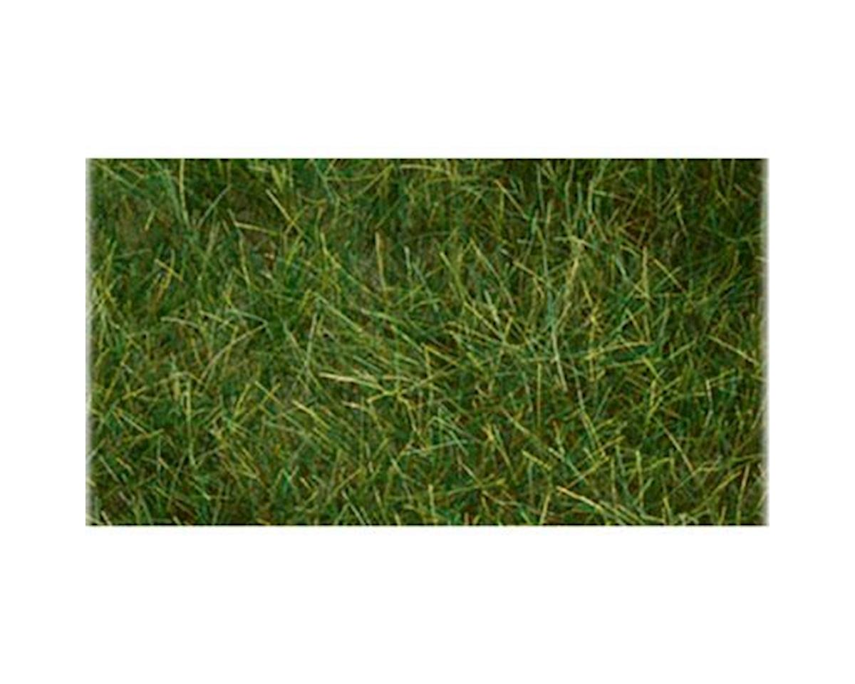 "Bachmann 6mm 11"" x 5.5"" Static Grass, Dark Green"