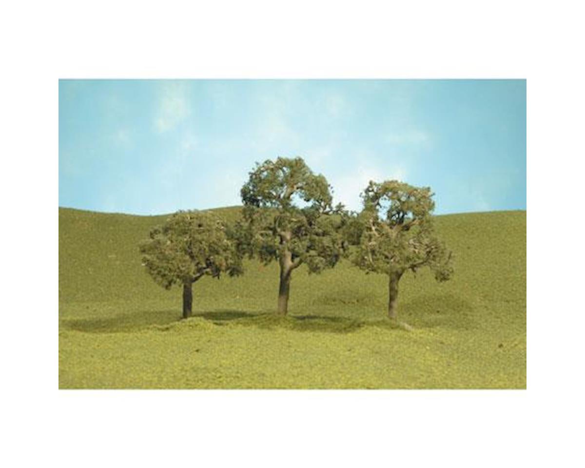 "Bachmann Walnut Trees, 2-2.25"" (4)"