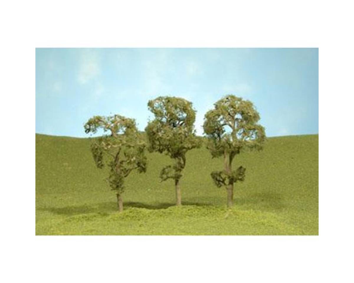 "Bachmann Maple Trees, 2.5-2.75"" (4)"