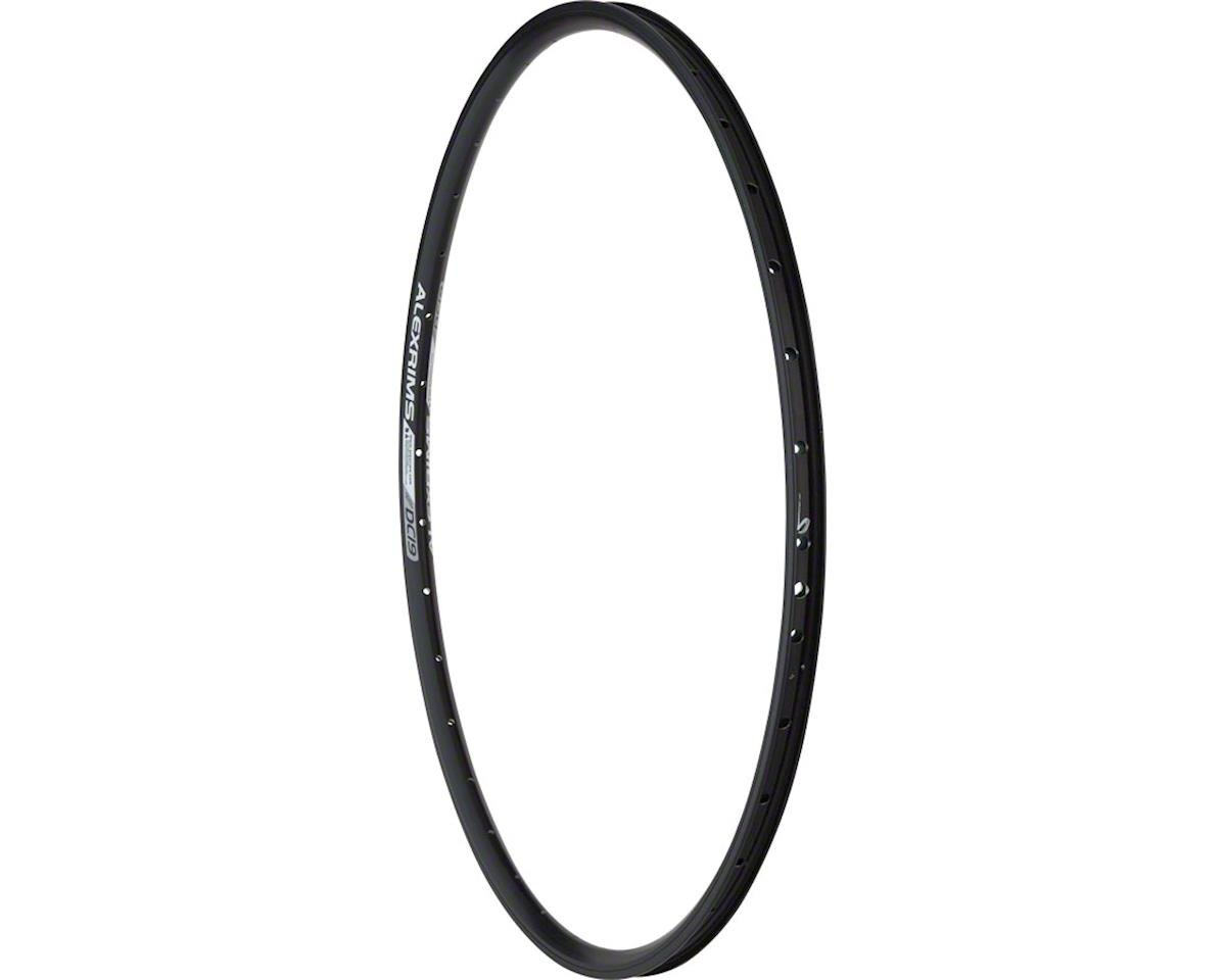 Alexrims DC19 Rim 700c 36h Schrader, All Black