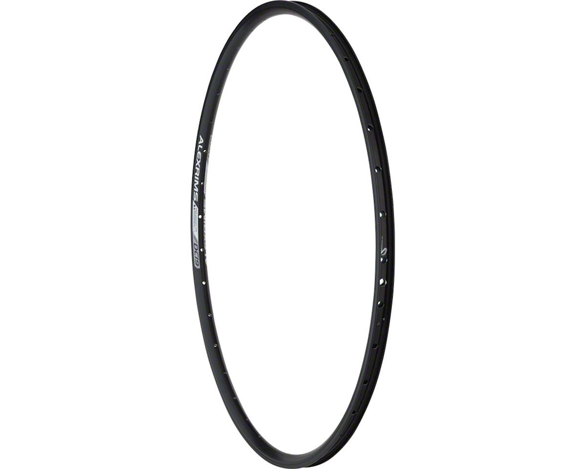Alex DC19 Rim 700c 36h Schrader, All Black