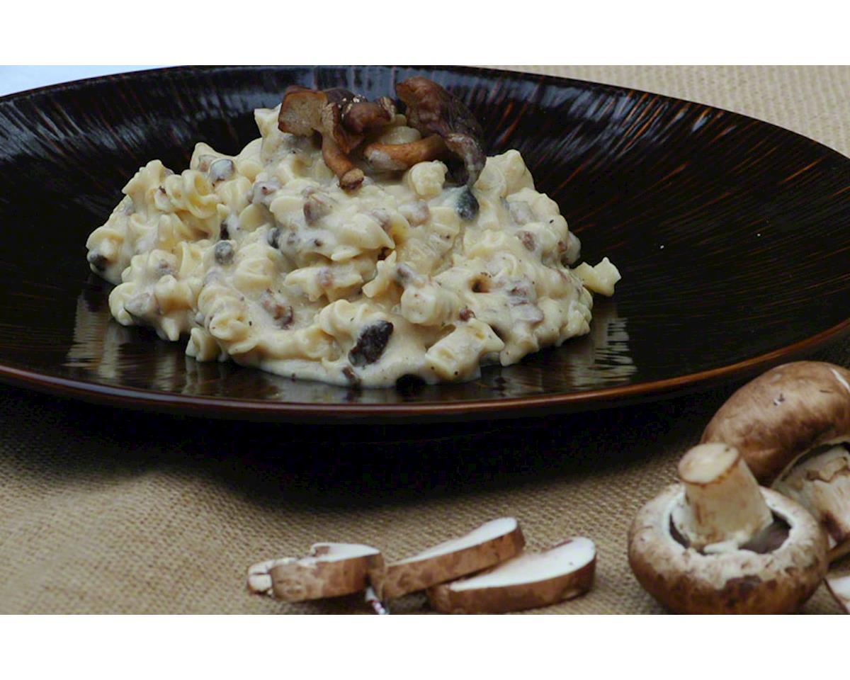 Backpacker's Pantry Beef Stroganoff with Mushrooms: 2 Servings