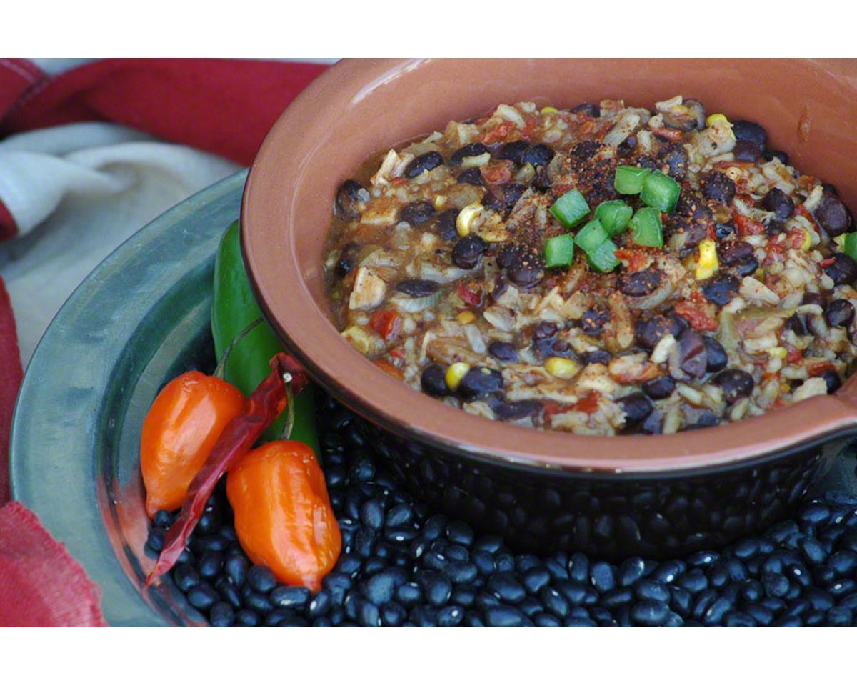 Backpacker's Pantry Santa Fe Chicken: 2 Servings
