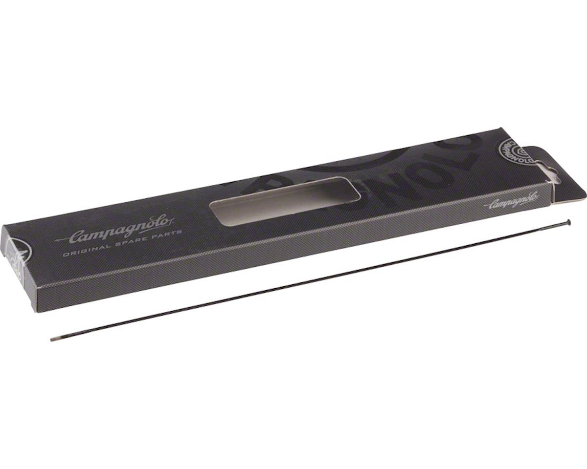 Campagnolo Hyperon Ultra Tubular Rear Spoke Kit, Black