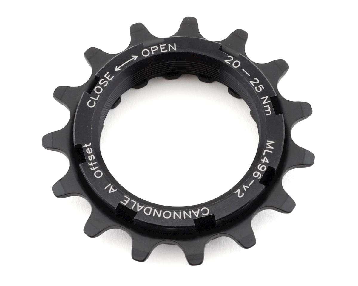 Cannondale Moterra Sprocket and Lockring