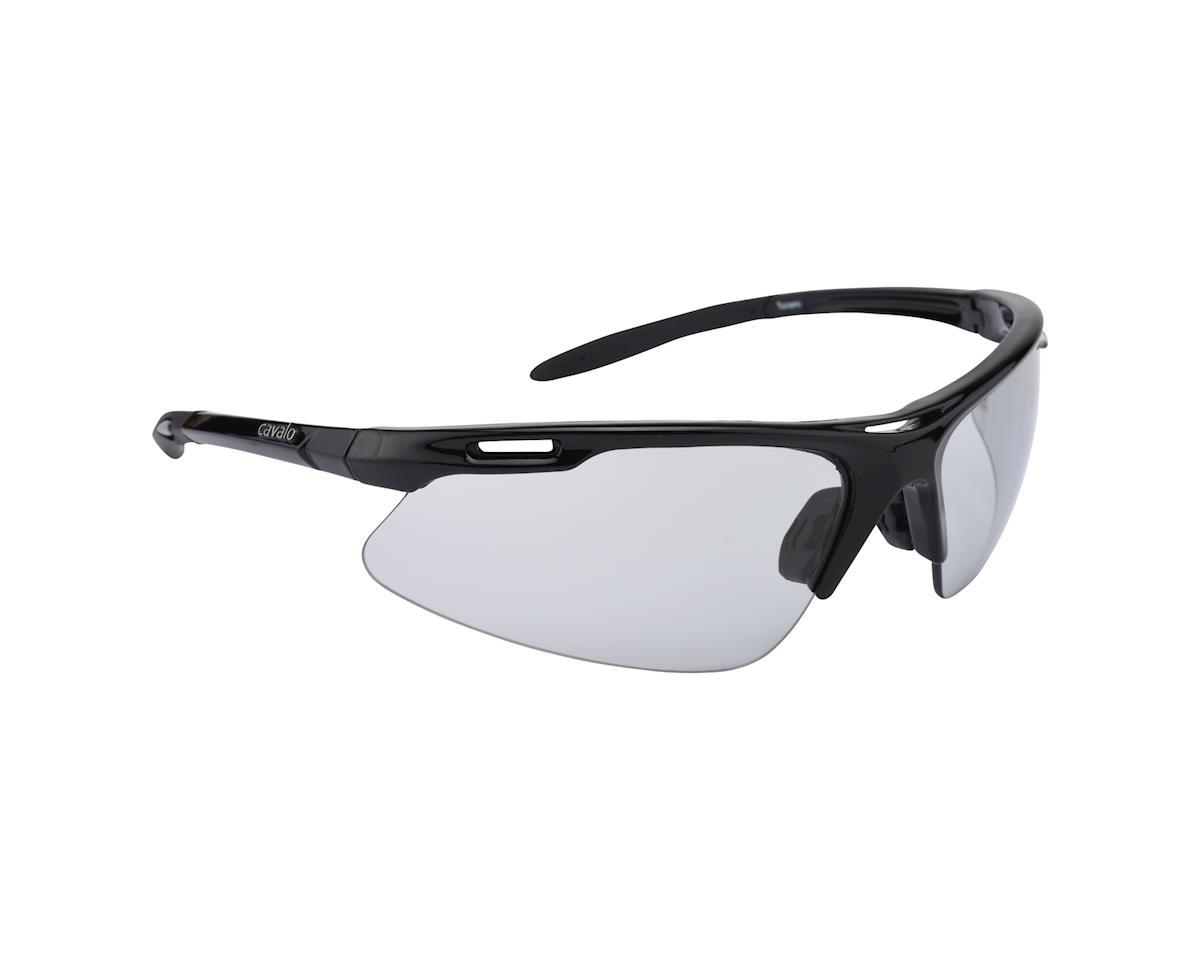 Image 1 for Cavalo Toirano Photochromic Sunglasses (Black)