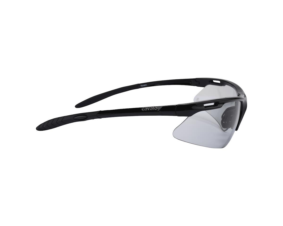 Image 3 for Cavalo Toirano Photochromic Sunglasses (Black)