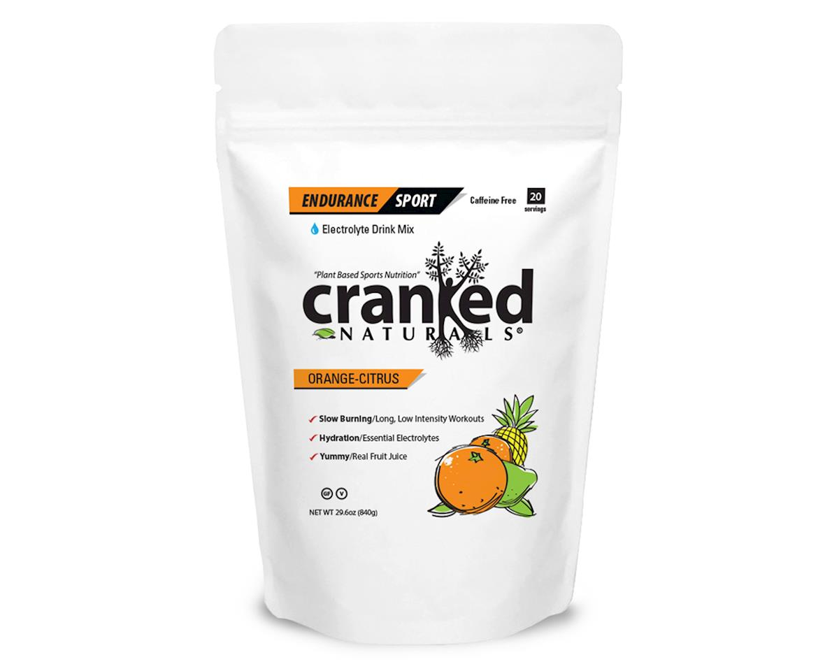 Cranked Endurance Sport Drink Mix (Orange) (1 9.6oz Packet)
