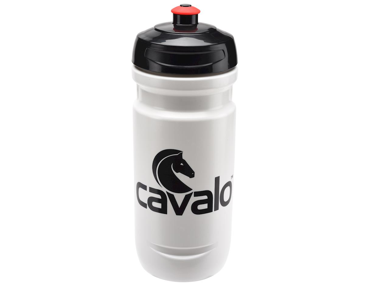 Image 1 for Elite Cavalo Loli 20oz Water Bottle
