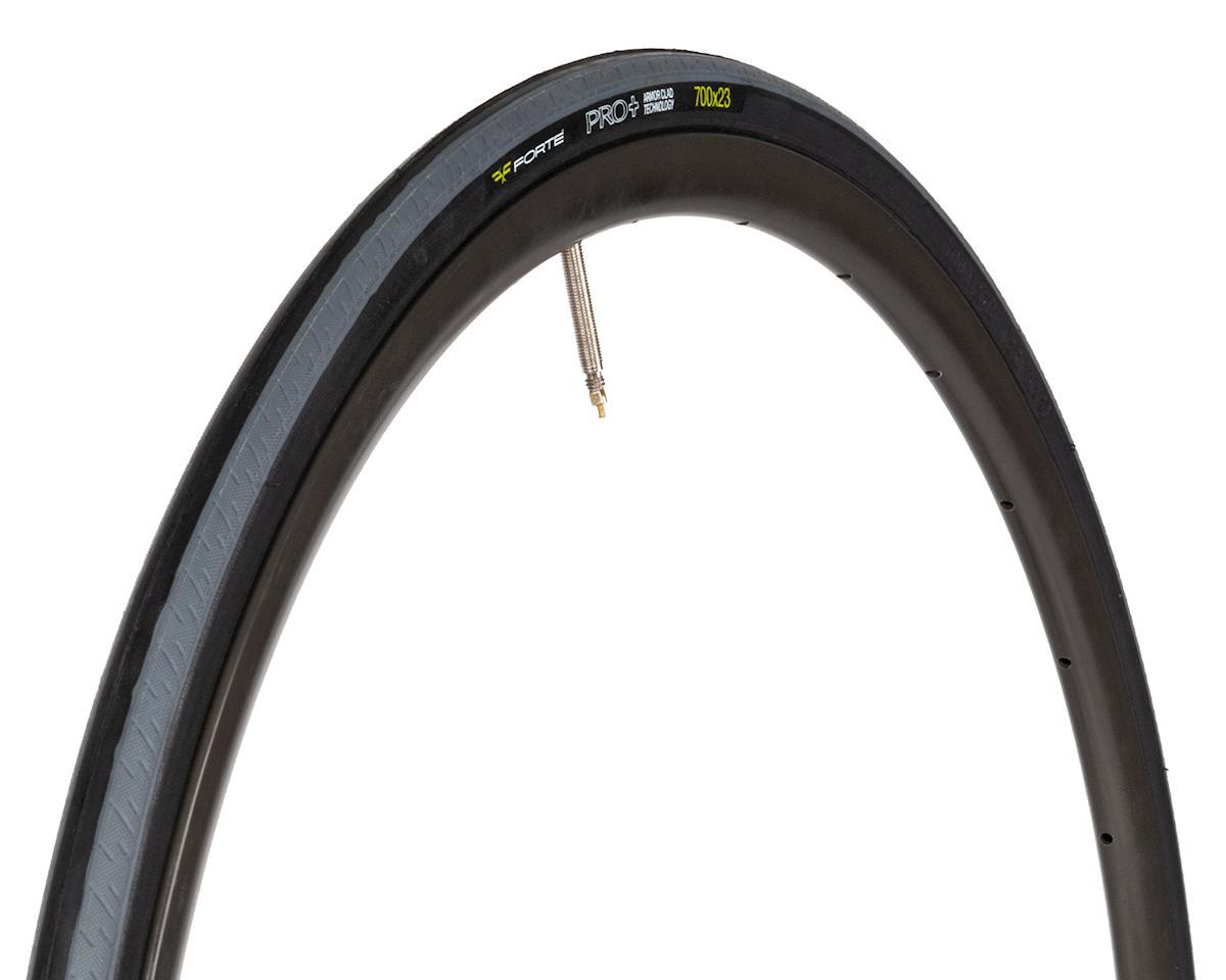 Forte PRO+ Road Tire (60TPI) (Wire Bead) (700 x 23)