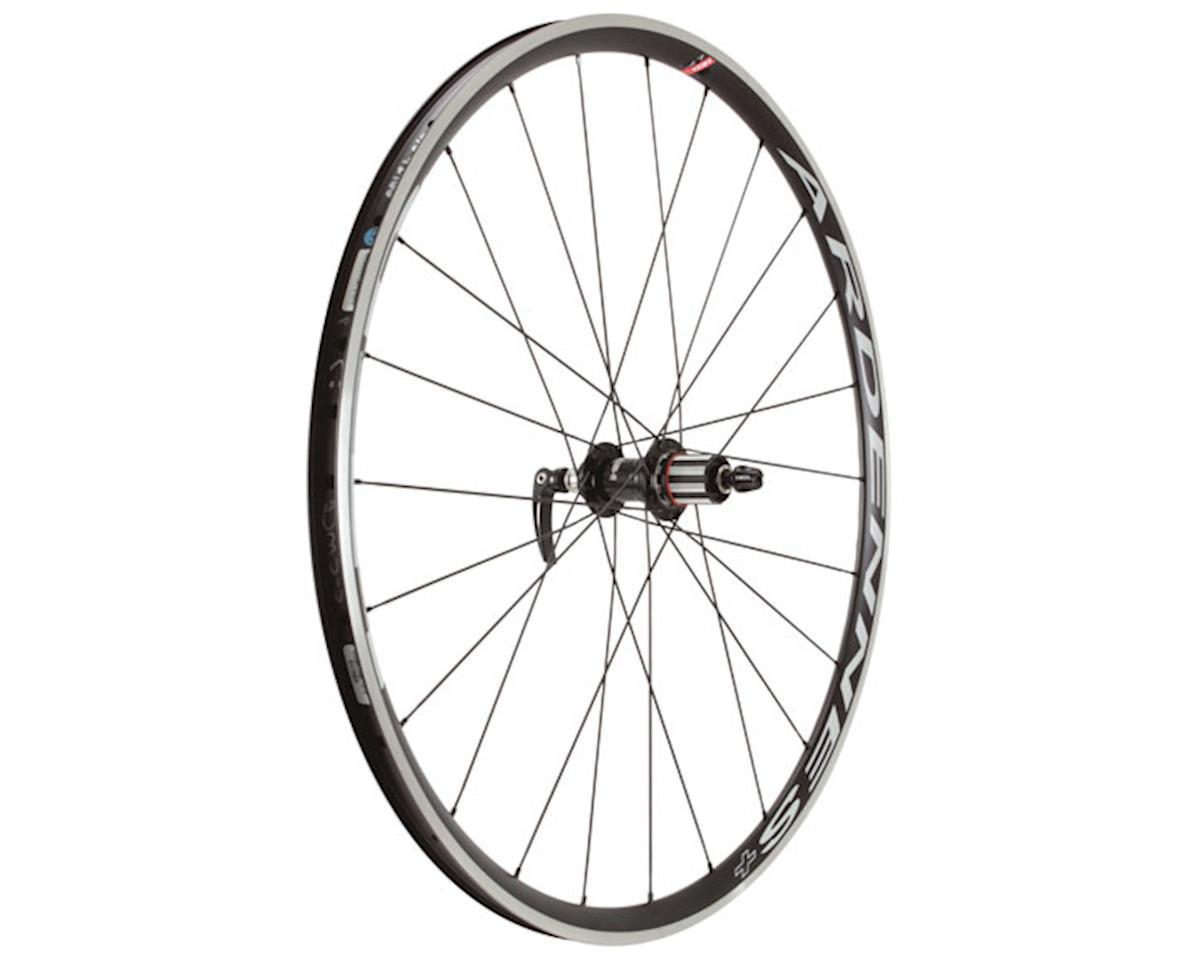 Hed Ardennes Plus LT Rear Wheel (HG 8-11 Speed) (Rim) (24H) (QR)