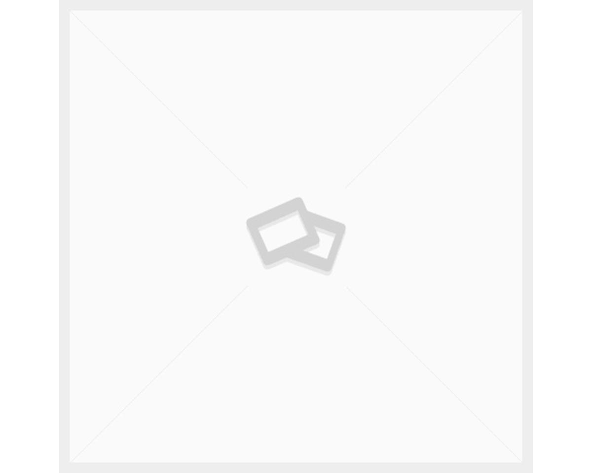 KS Piston Spring (i950) (Supernatural)