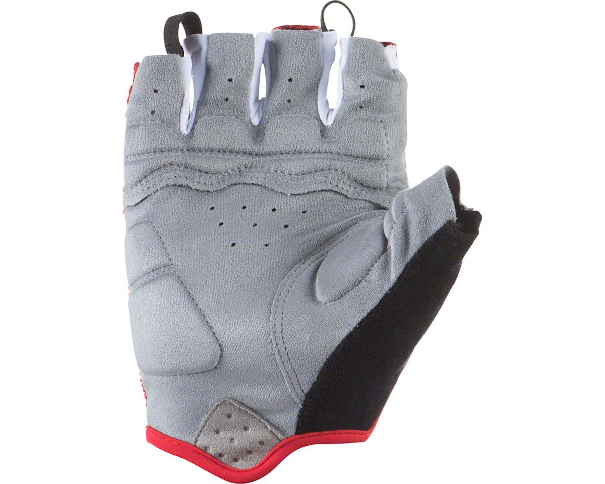 Lizard Skins Aramus GC Gloves - Titanium, Short Finger, 2X-Large (M)