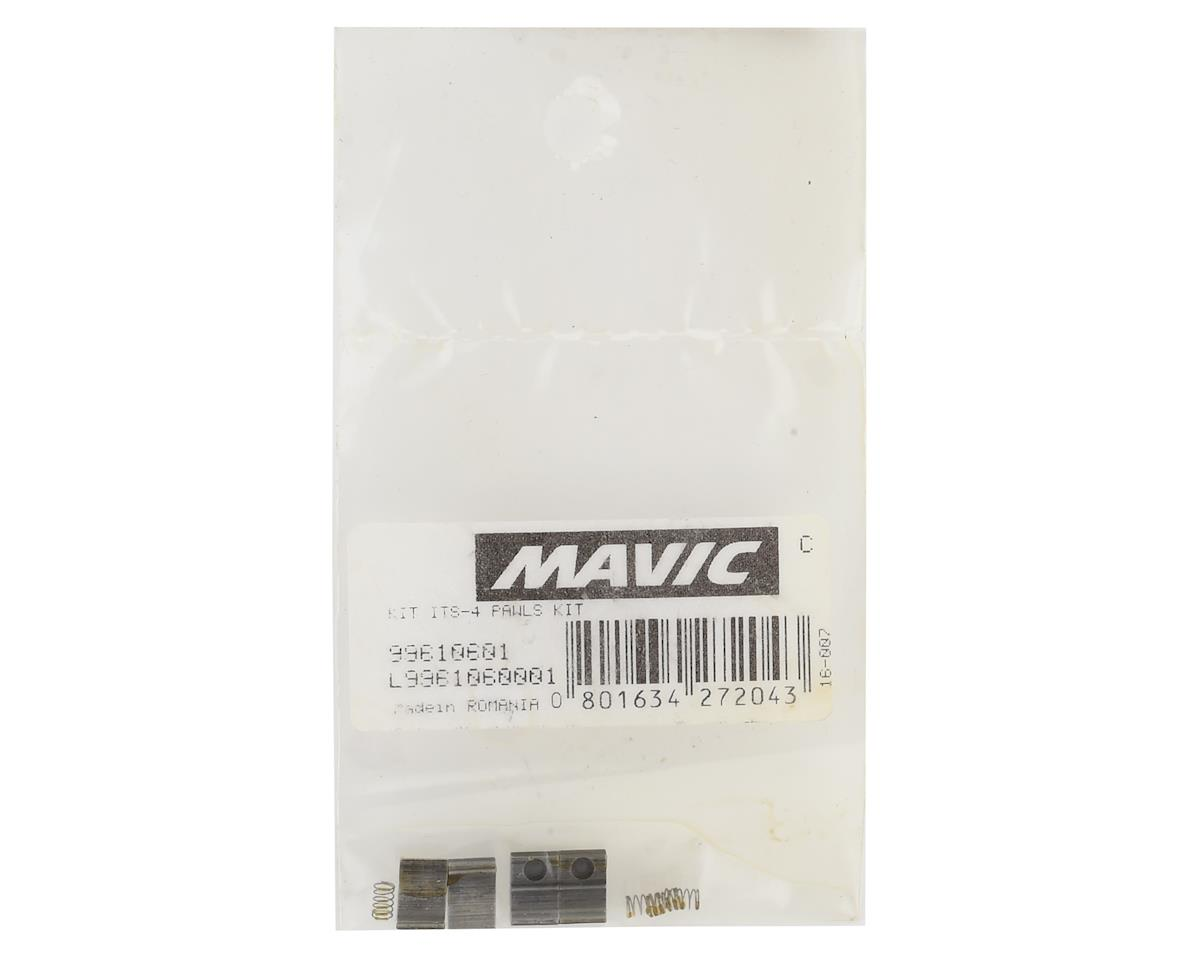 Mavic ITS4/TS2 Freehub Pawl Kit