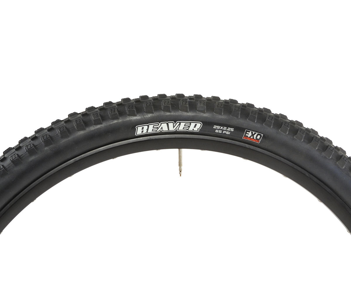 Image 4 for Maxxis Beaver Dual Compound Tire (EXO) (29 x 2.25)