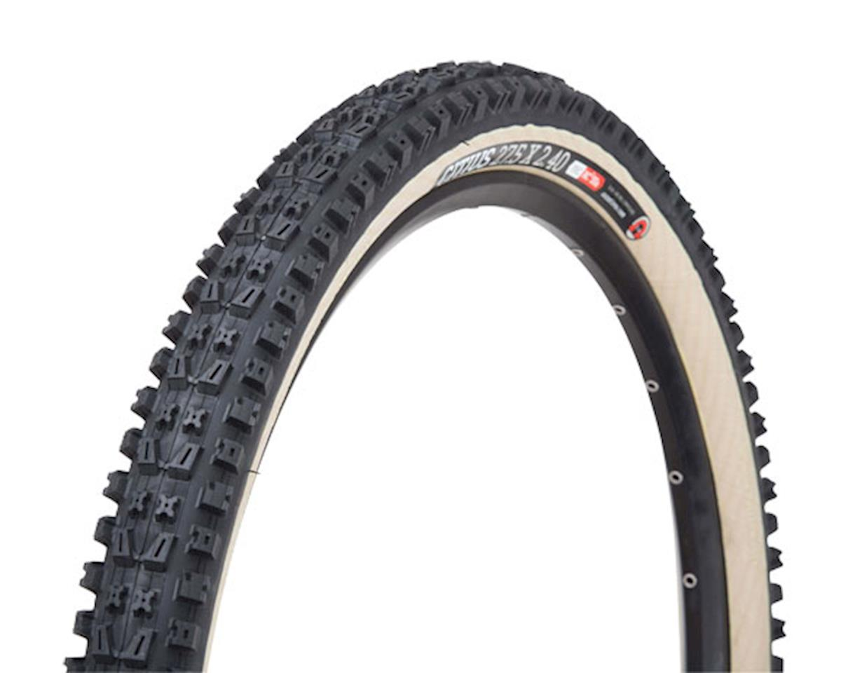 "Onza Citius 27.5"" (650b) Tire"