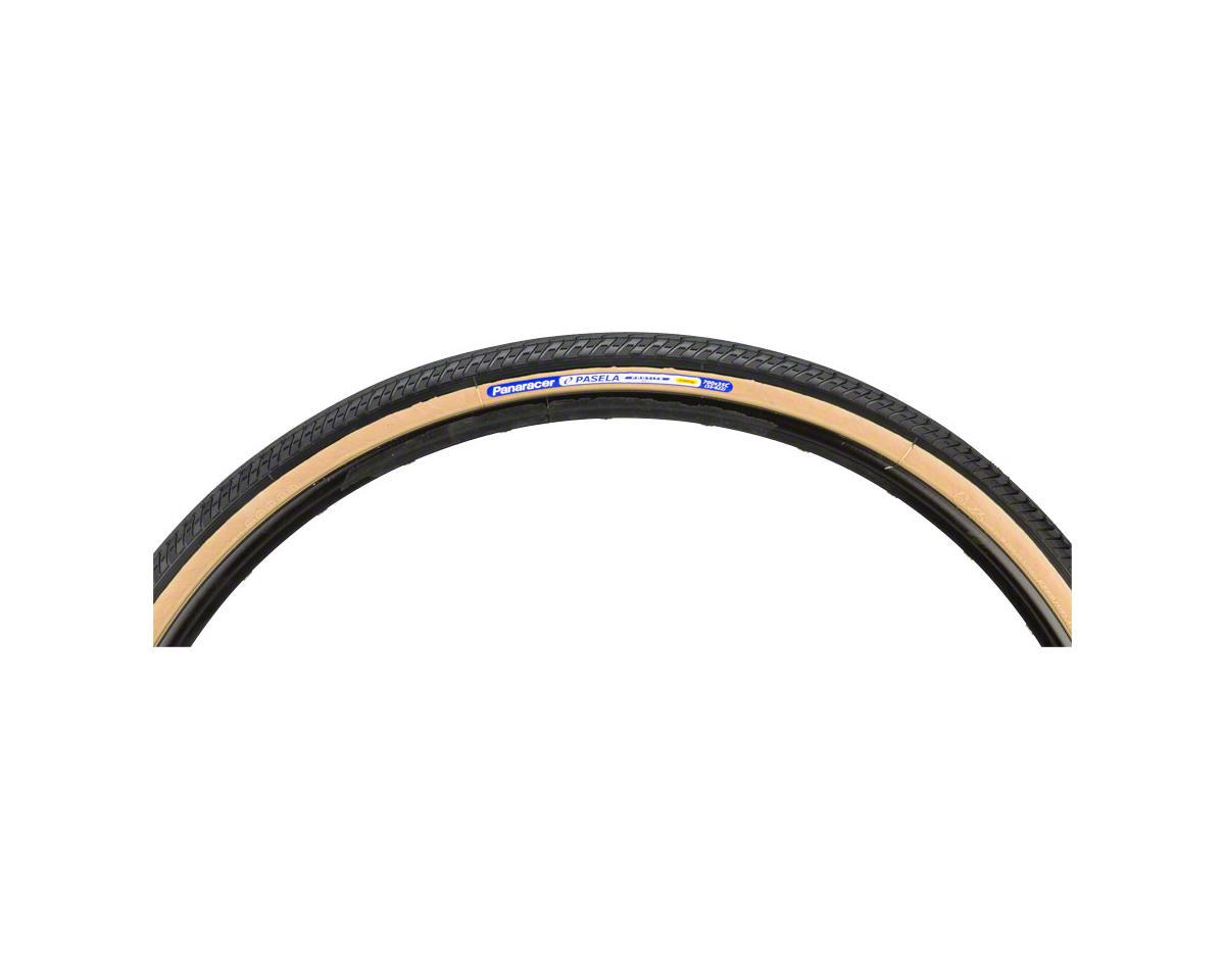 Panaracer Pasela ProTite Tire - 26 x 1.25, Clincher, Steel, Black/Tan, 60tpi
