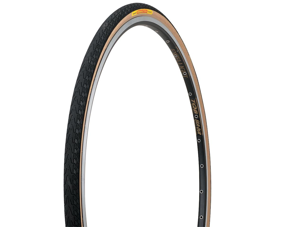 Image 3 for Panaracer Pasela Road Tire (27 x 1-1/8)