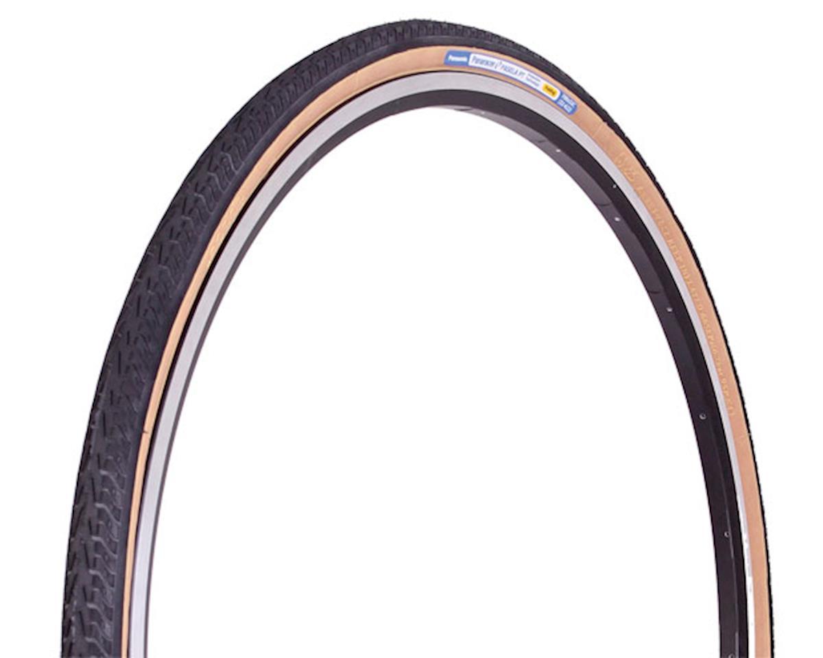 Panaracer Pasela ProTite Tire - 700 x 32, Clincher, Steel, Black/Tan, 60tpi