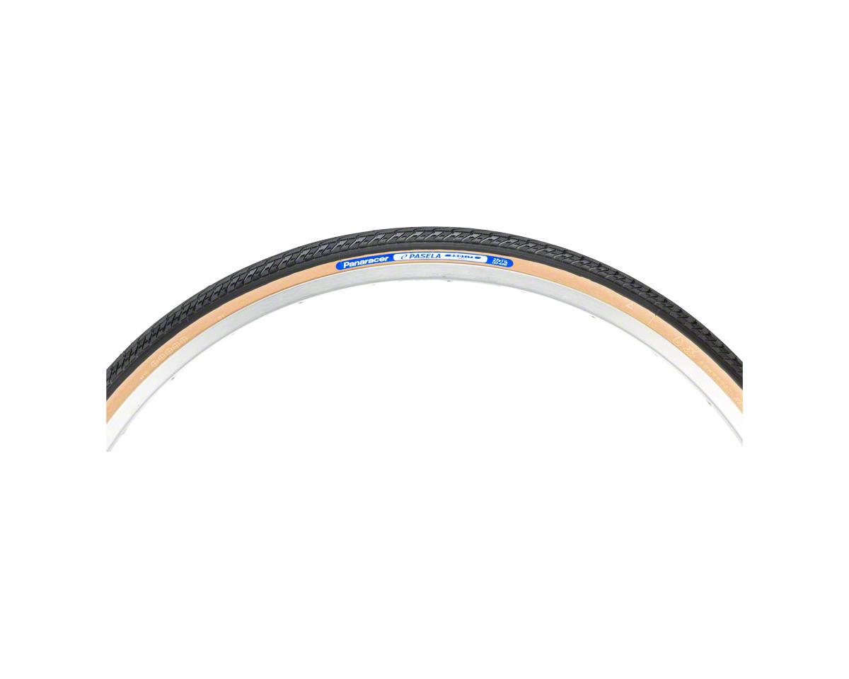 Panaracer Pasela ProTite Tire - 27 x 1-1/4, Clincher, Wire, Black/Tan, 60tpi