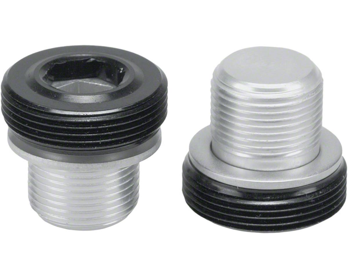 Problem Solvers PTO (Power Take Off) Self-Extracting Bolt Set (2 Bolts, 2 Caps)