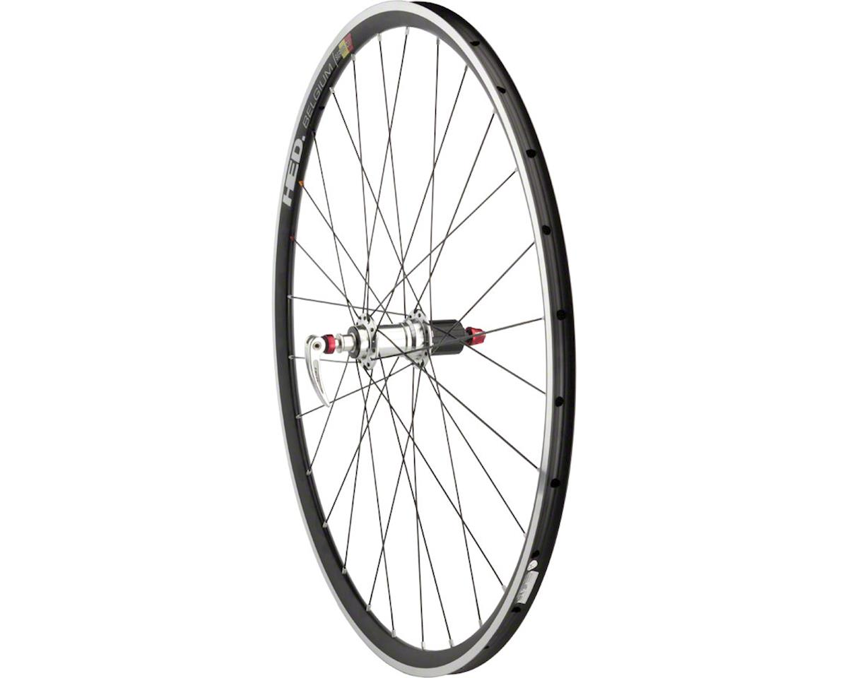 Road Tubular Rear Wheel 700c 28h HED Novembre / HED Belgium / DT