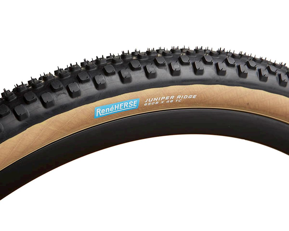 Rene Herse Juniper Ridge Tire (Tan Sidewall) (Standard Casing) (650B x 48)