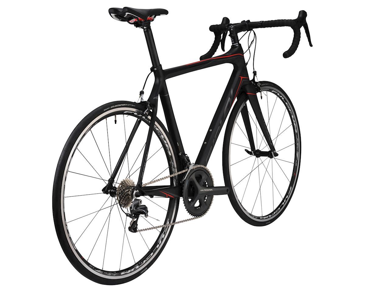 Ridley Fenix Ultegra Carbon Road Bike - 2016 (Carbon) (Xsmall)