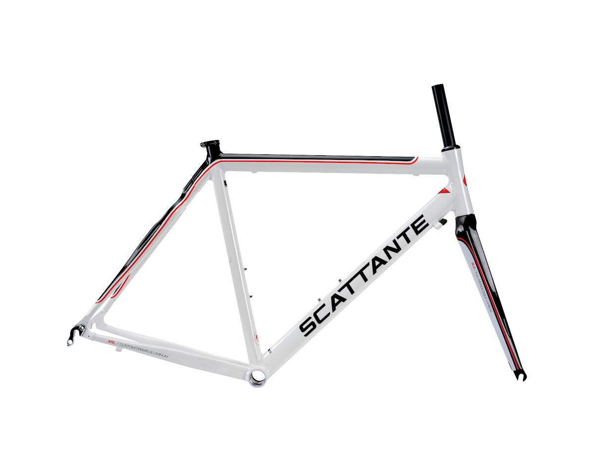 Scattante XRL Team Road Bike Frame with Fork and Headset (Wh/Blk)