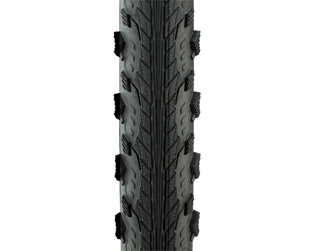 Schwalbe Hurricane Tire (Performance Line) (Dual Compound) (Wire) (700 x 40)