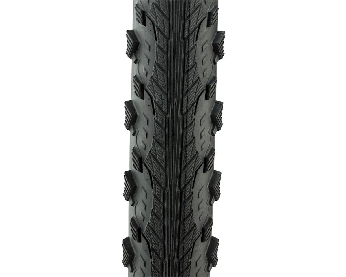Schwalbe Hurricane Tire (Wire) (Performance Line) (Dual Compound) (29 x 2.00)