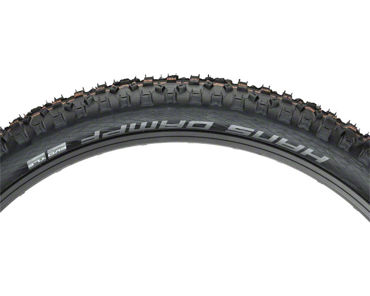 Schwalbe Hans Dampf Tubeless Easy SnakeSkin EVO Tire (Folding) (26 x 2.35)