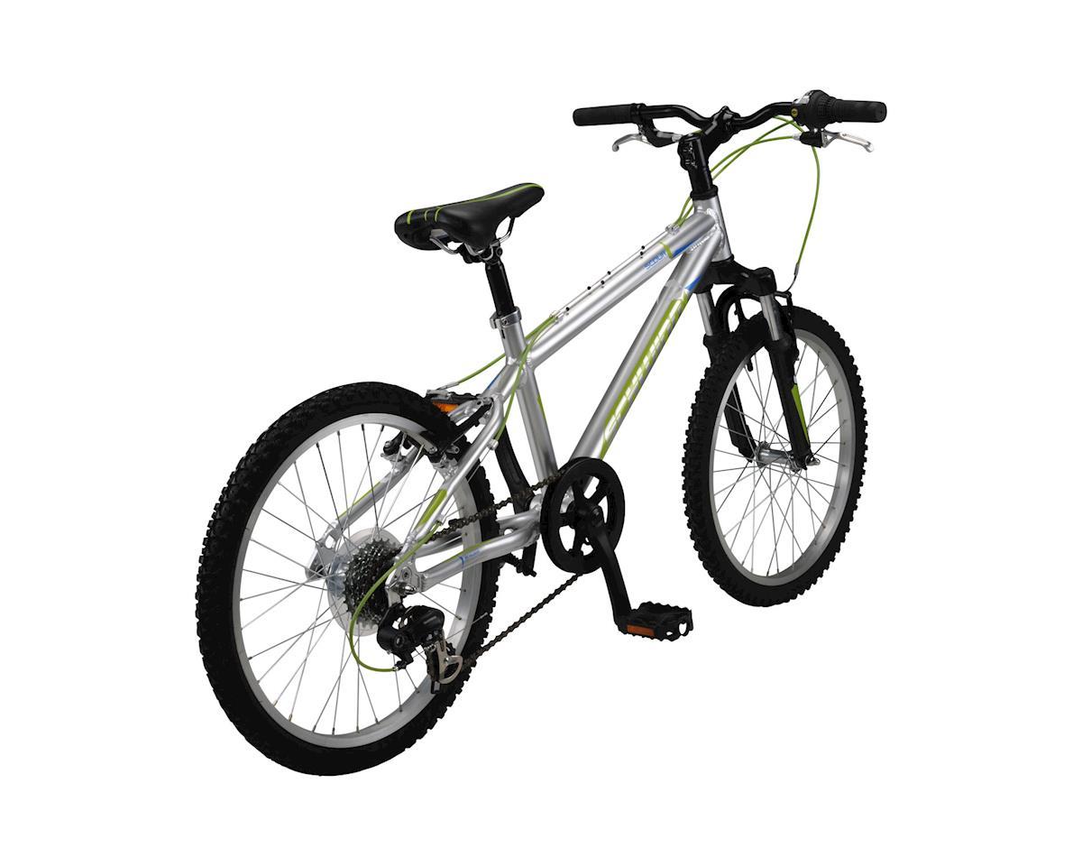 """Schwinn Scour 20"""" Kid's Bike (Silver) (20)"""