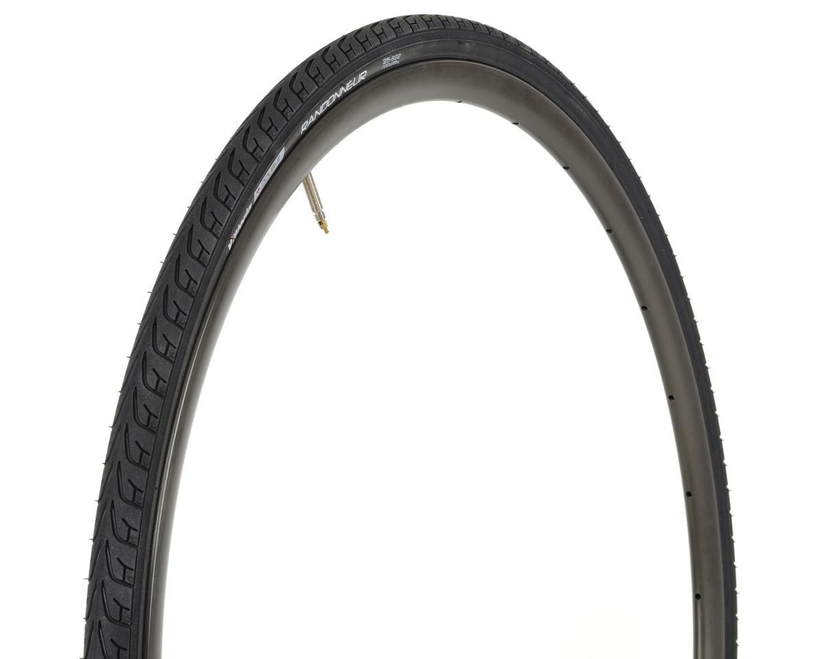 Vittoria Randonneur II Trekking Tire (Steel Bead) (700 x 25)
