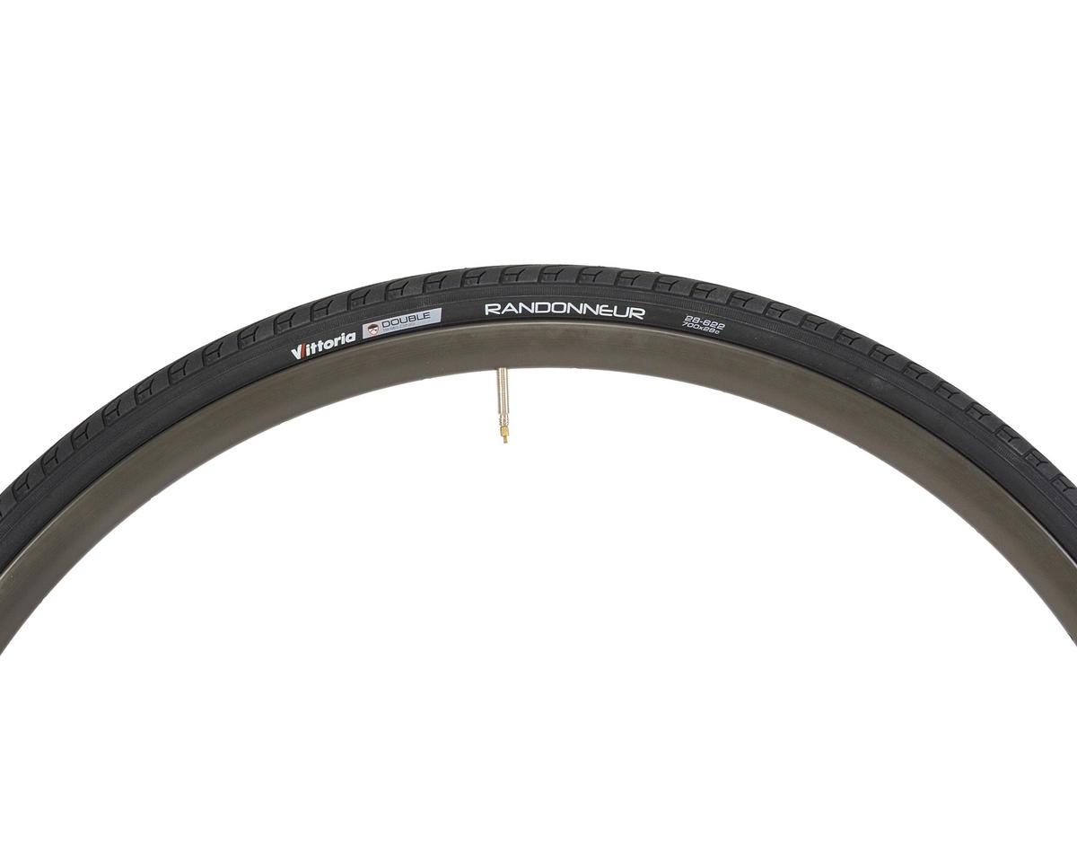 Image 3 for Vittoria Randonneur Classic Tire (Steel Bead) (700 x 28)