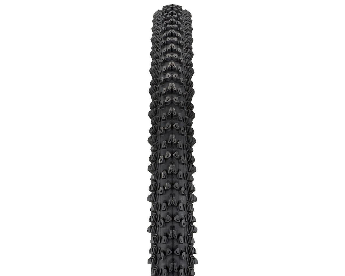 Image 2 for WTB Weirwolf 2.1 Comp Tire Steel Bead