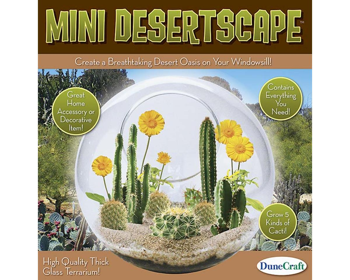 Dunecraft GT-0258 Glass Terrarium Mini Desertscape