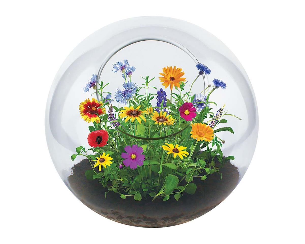 GT-0261 Wildflower Garden