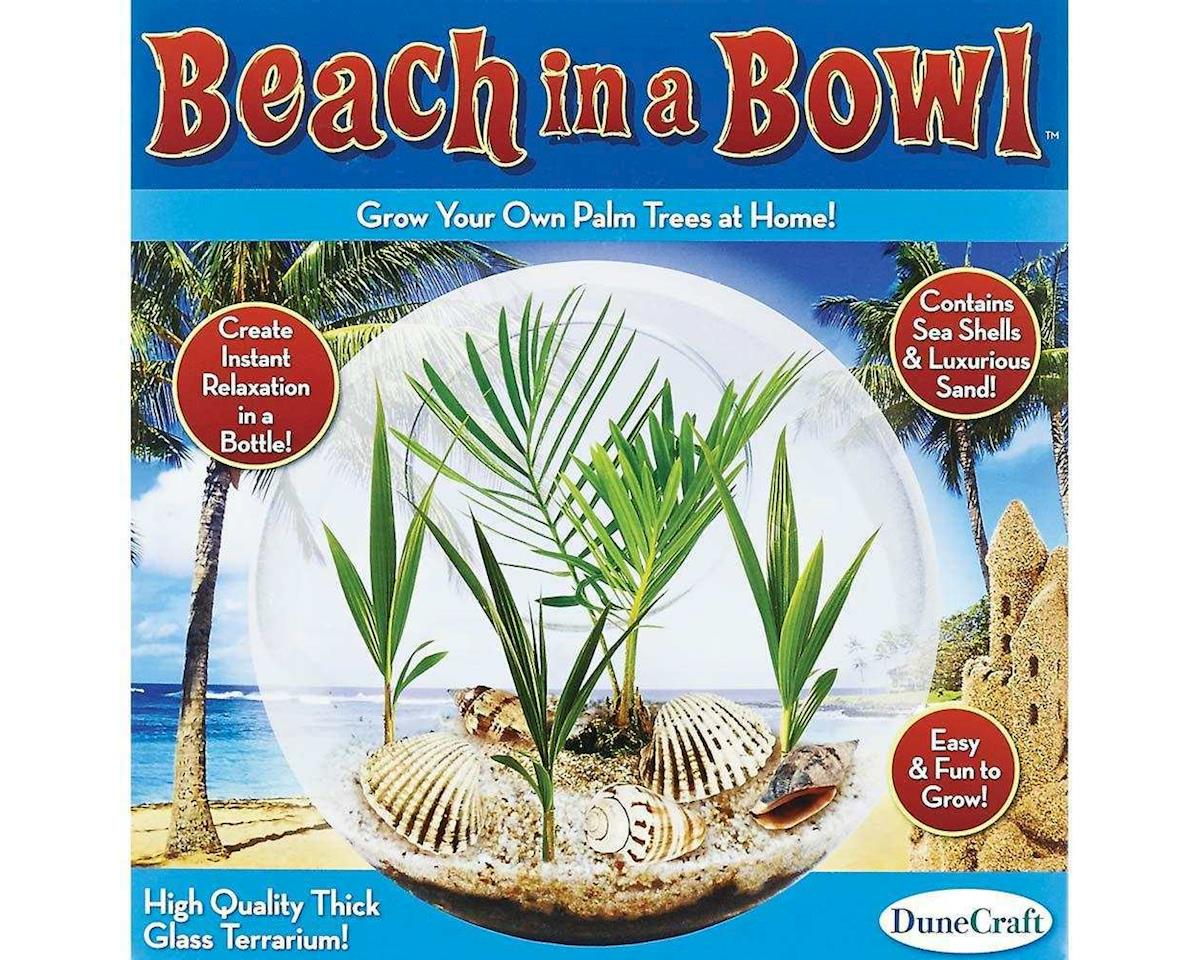Dunecraft GT-0262 Beach In A Bowl