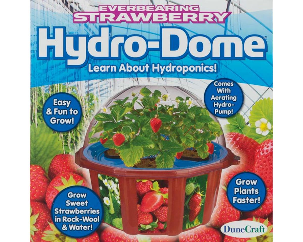 Dunecraft HD-0049 Everbearing Strawberry Hydro-Dome