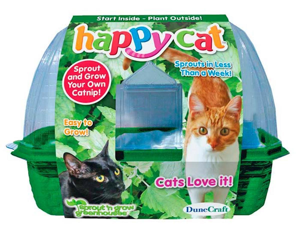 Dunecraft SG-0152 Happy Cat Sprout 'N Grow Catnip Kit