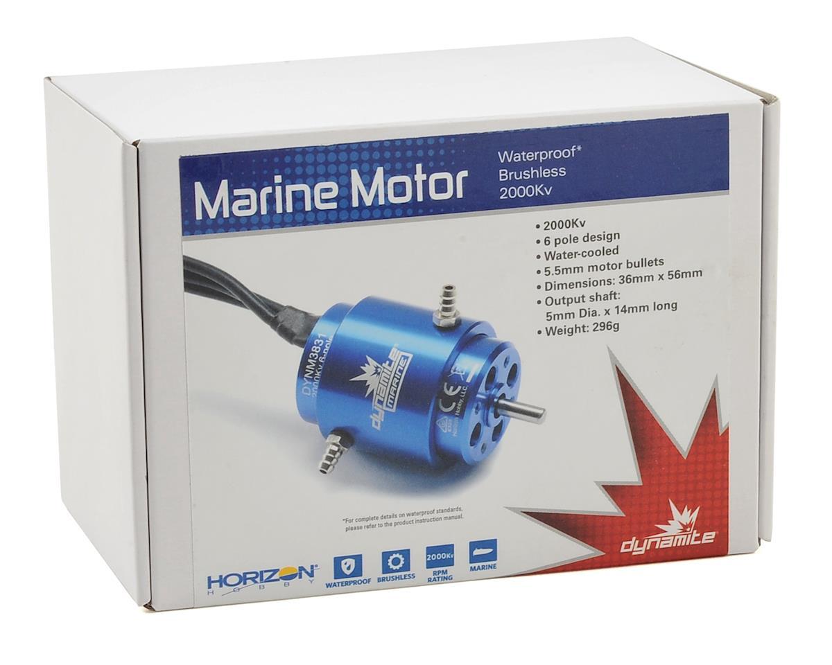 3650 6-Pole Marine Motor (2000kV) by Dynamite