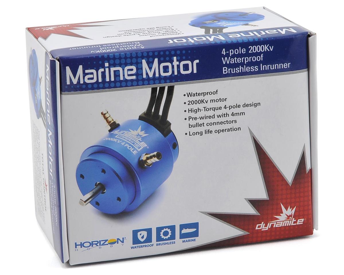 3650 4-Pole Brushless Marine Motor (2000kV) by Dynamite