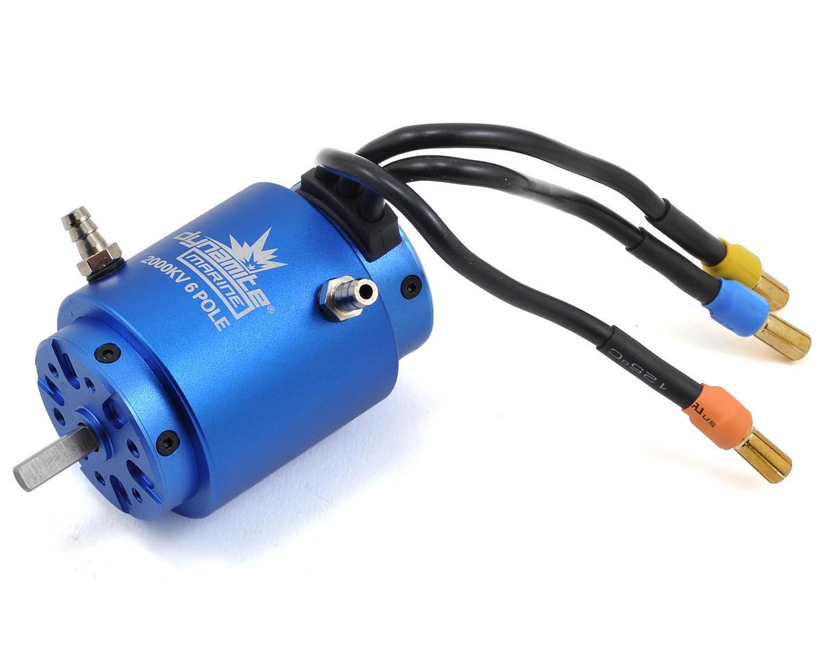 Dynamite 3660 6 Pole Brushless Marine Motor (2000kv)