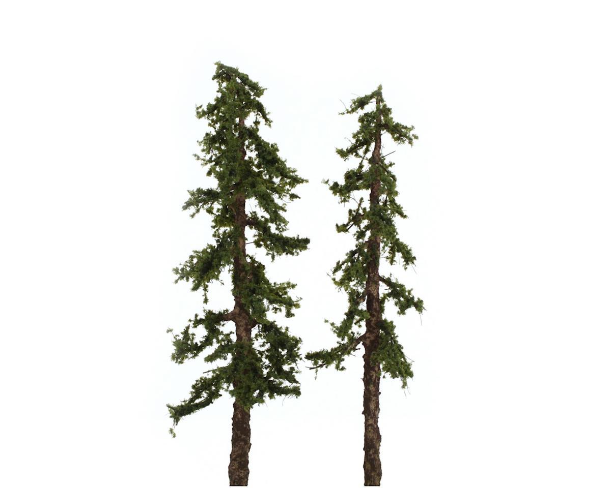 """Pro-Elite Tree, Redwood 5-6"""" (2)"""