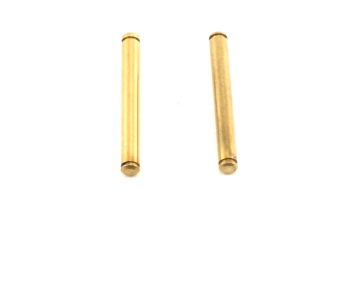 Front Outer Hinge Pins by Losi