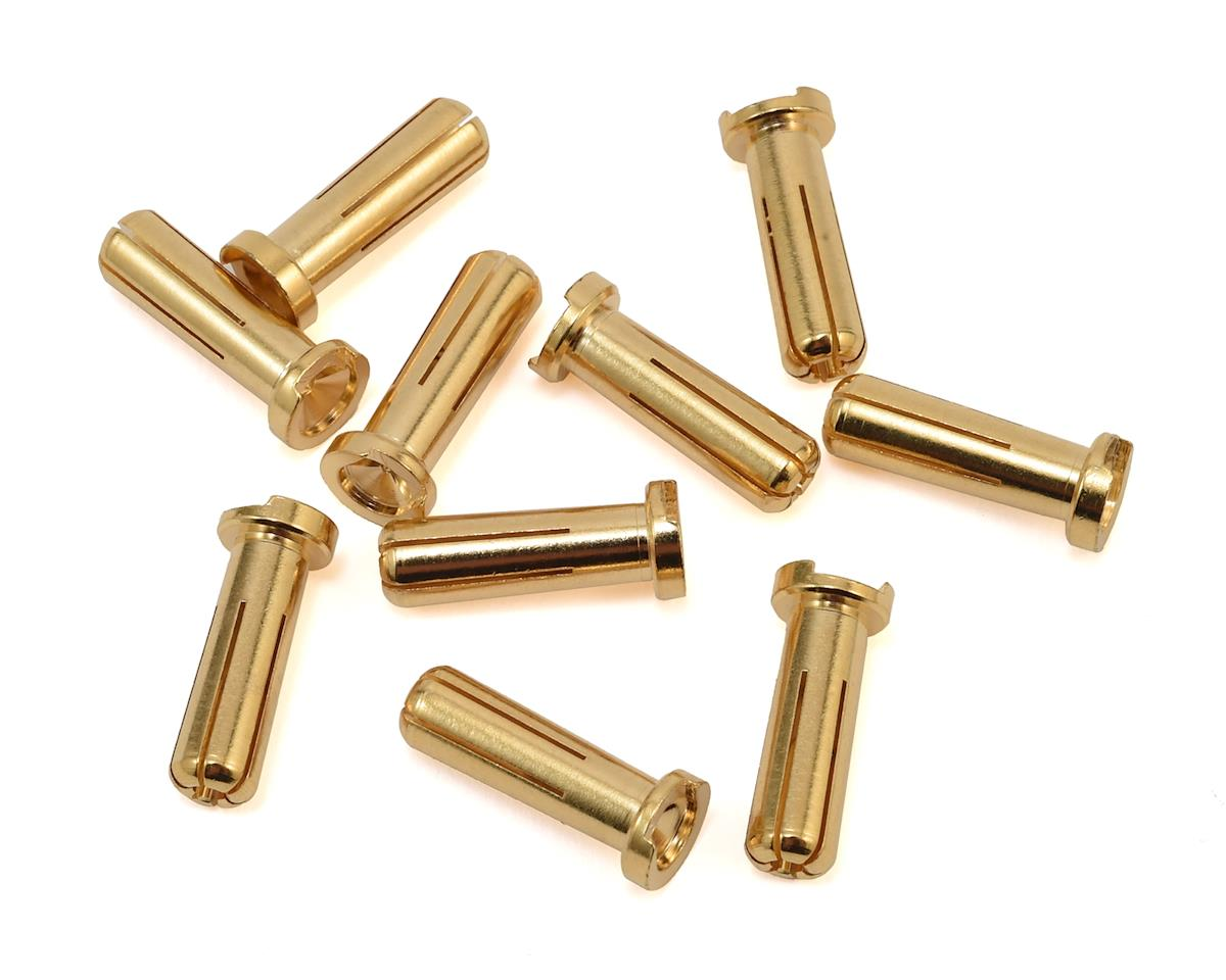 LRP 5mm Gold Works Team Bullet Connectors (10)
